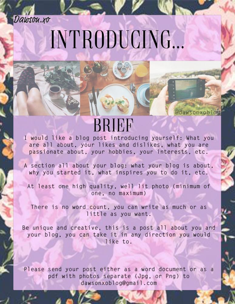 Introducing Brief